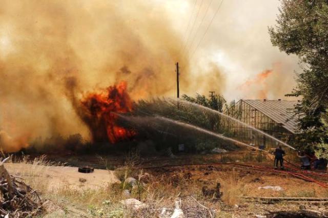 Antalyada Aksuda Orman Yangını