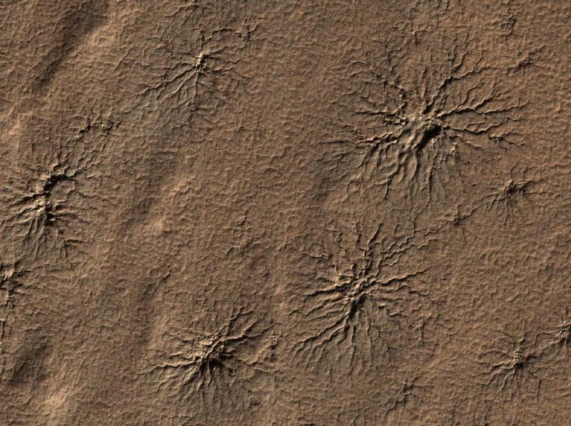 MARS ÖRÜMCEKLERİ